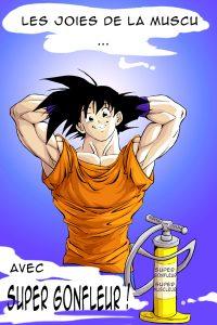 Joie de la Muscu [Dragon Ball]