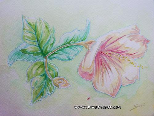 news-2012-04-20-aquarelle-mamie-fleur