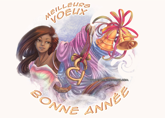 news-2013-01-01-bonne-annee-bis