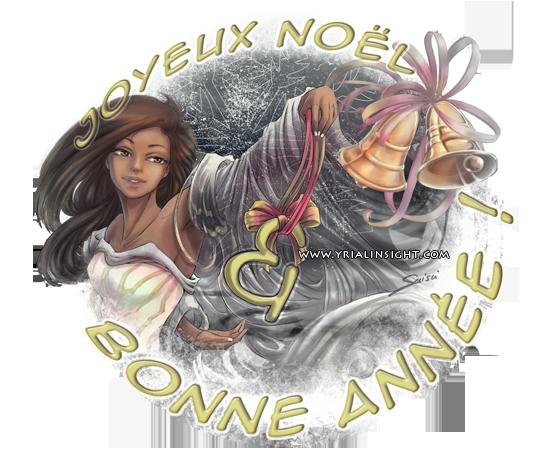 news-2013-01-01-bonne-annee