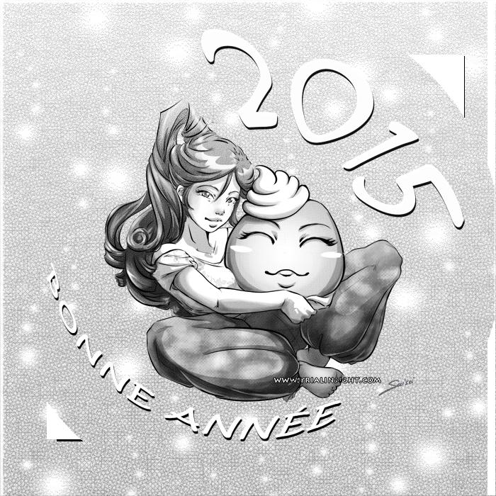 news-2015-01-02-bonne-annee-2015