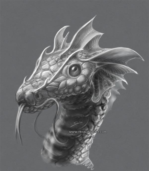 news-2016-05-20-petit-dragon-details