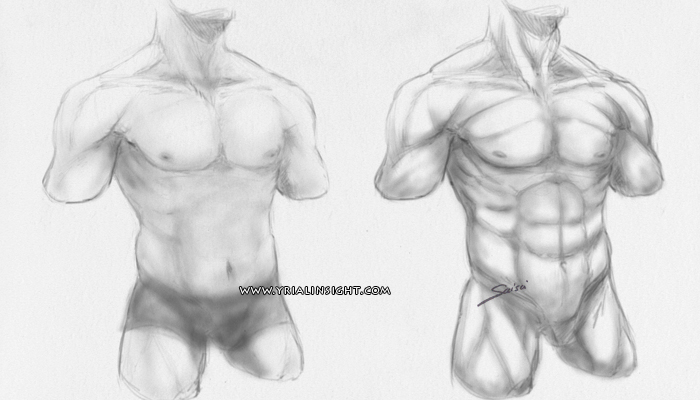 news-2016-06-01-croquis-tronc-homme-fitness-vs-musulation