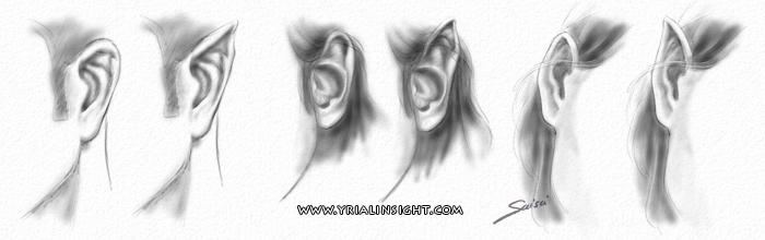 news-2016-07-01-oreilles-elfe-normales-3-cote