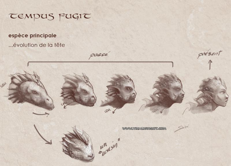 tempus-fugit-rough-espece-principale-2-zoom-tetes