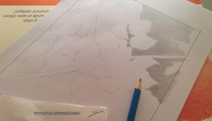 feuilles et branches en contour - le contour de la plante et de l'espace négatif