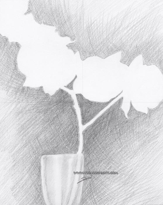 feuilles en négatif : fond hachuré délibéré