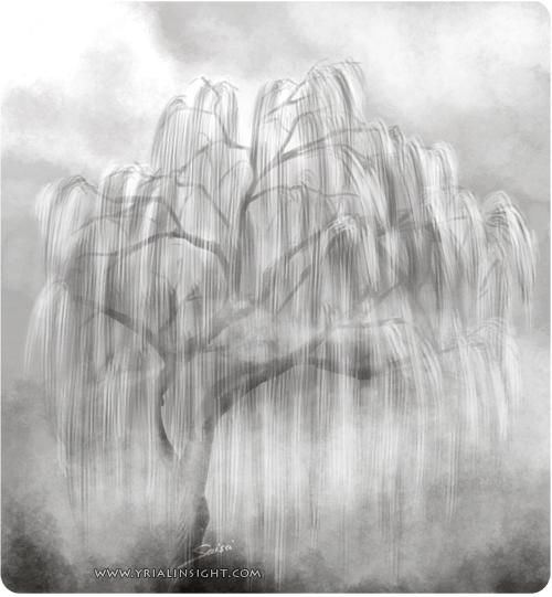 saule pleureur dans la brume - esquisse rapide