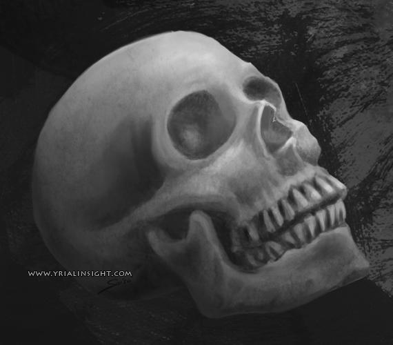 vue d'un crâne humain de 3/4