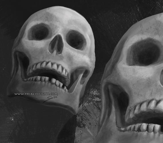 vue d'un crâne humain de face légèrement en contre-plongée