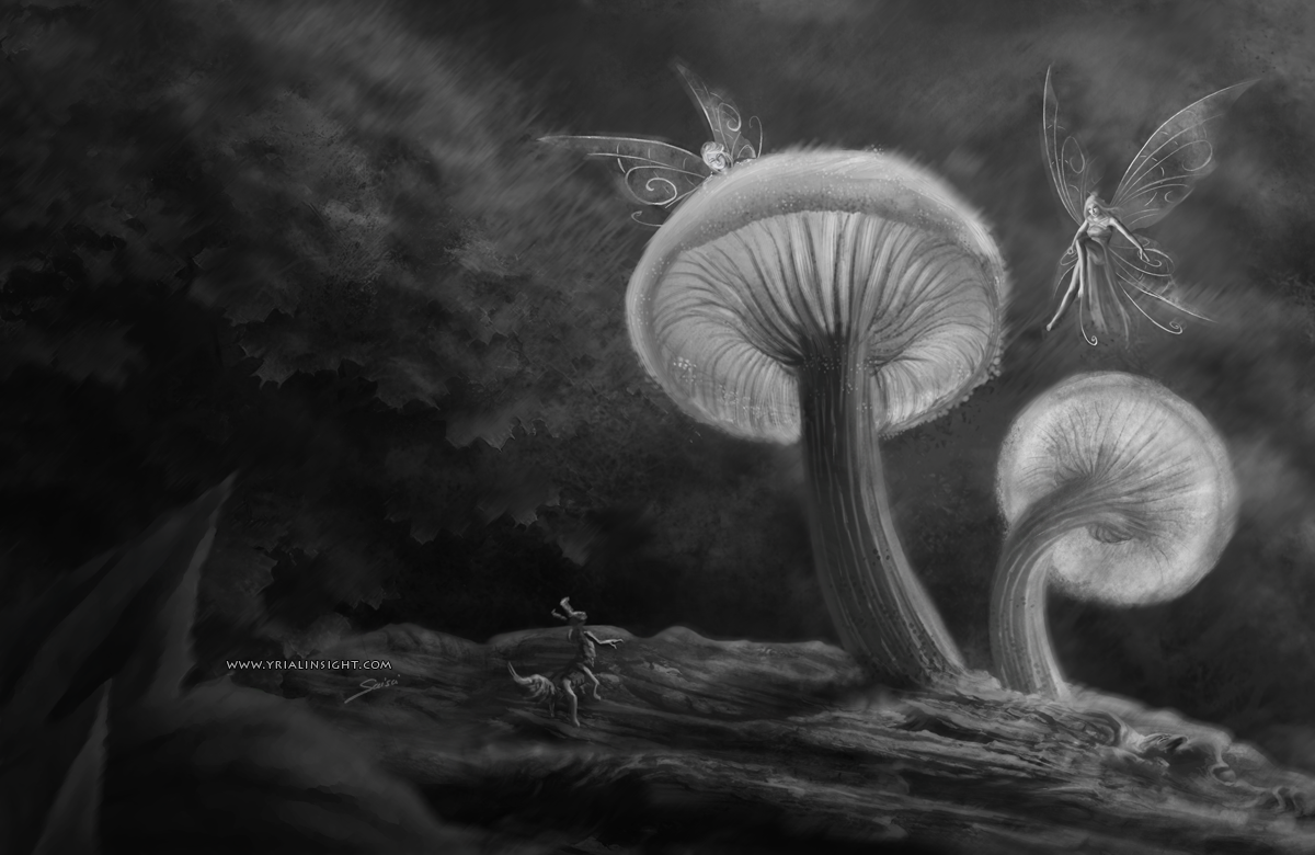 meet fairies - illustration en noir et blanc