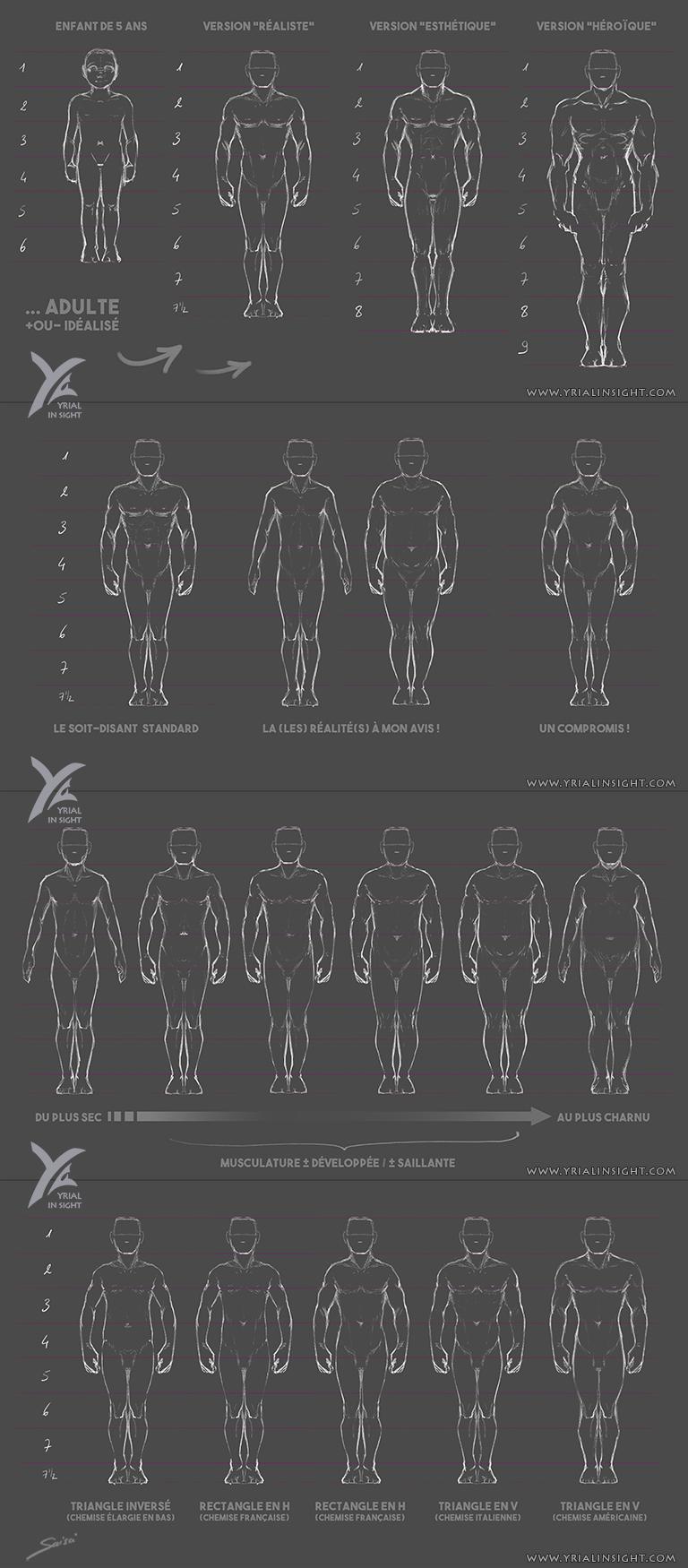 Charadesign || études des proportions du corps humain - Planches du corps masculin vu de face - différentes morphologies || Saisei Yrial in Sight