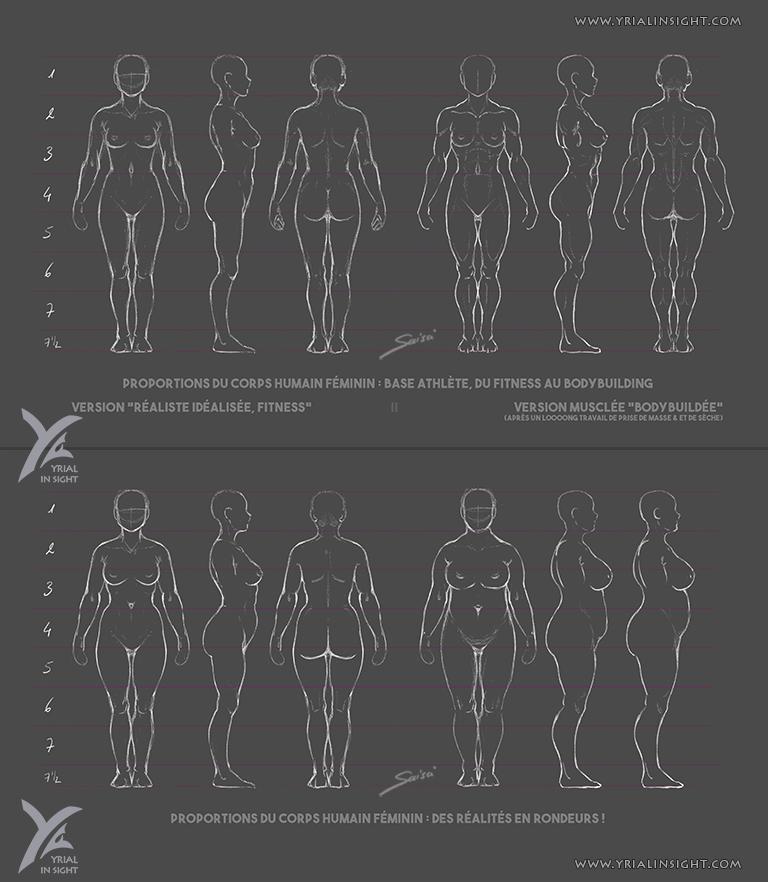 Charadesign || études des proportions du corps humain - Planches du corps féminin en 360° - différentes morphologies || Saisei Yrial in Sight