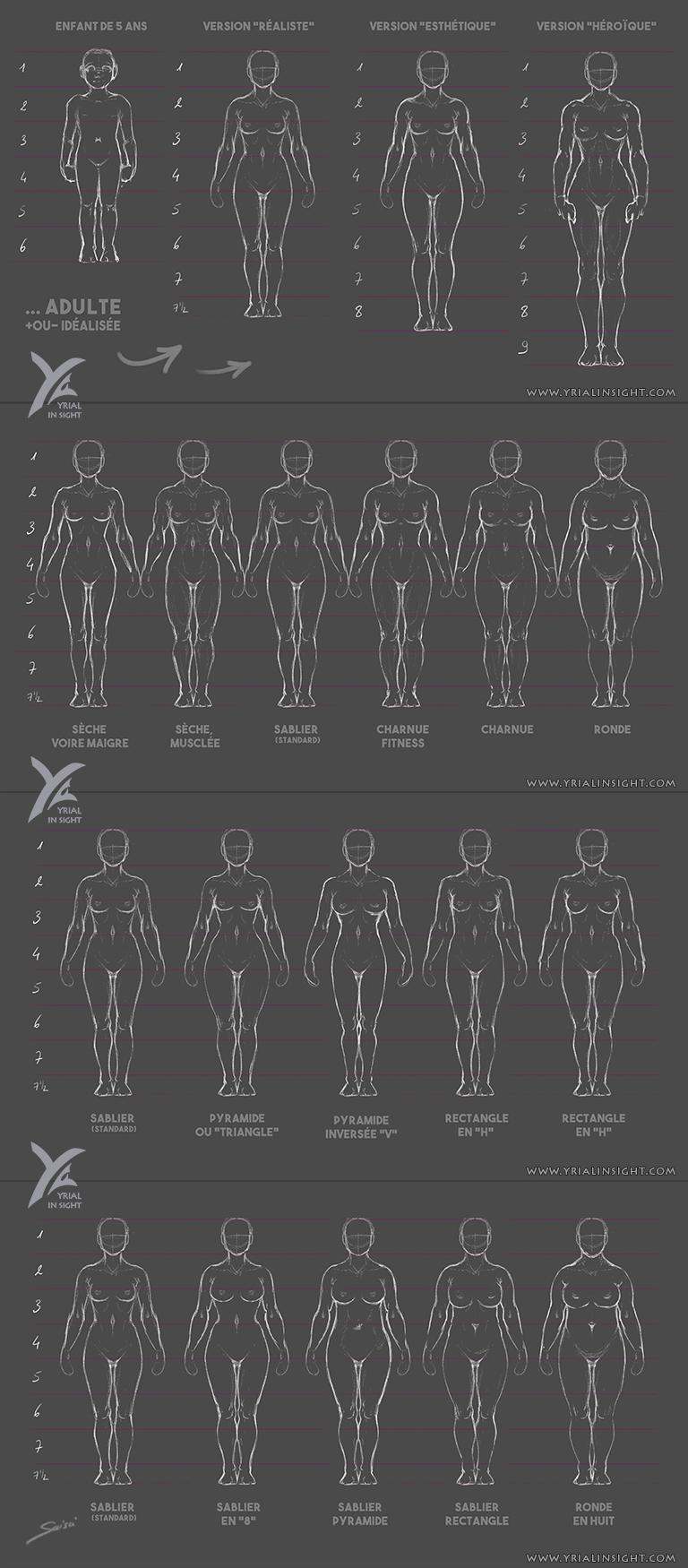 Charadesign || études des proportions du corps humain - Planches du corps féminin vu de face - différentes morphologies || Saisei Yrial in Sight