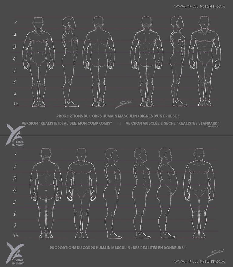 Charadesign || études des proportions du corps humain - Planches du corps masculin en 360° - différentes morphologies || Saisei Yrial in Sight